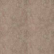 Sting Paisley Decorator Fabric by S. Harris