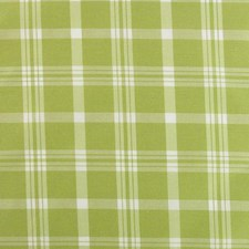 Wild Lime Decorator Fabric by B. Berger