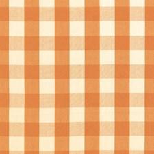 Pumpkin Decorator Fabric by Schumacher