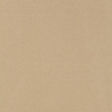 Chamomile Decorator Fabric by Schumacher