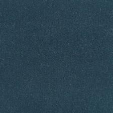 Myosotis Decorator Fabric by Schumacher