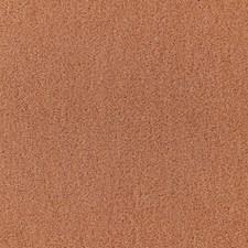 Camomile Decorator Fabric by Schumacher