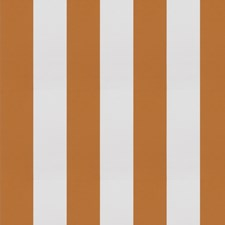 Pumpkin Stripes Decorator Fabric by Trend