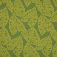 Kiwi Decorator Fabric by Sunbrella