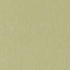 Pear Decorator Fabric by Schumacher