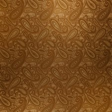 Antique Paisley Decorator Fabric by Trend