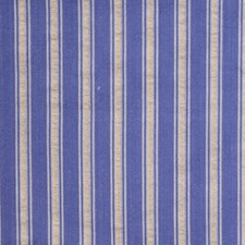 Wedgwood Stripes Decorator Fabric by Trend