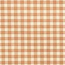 Tangerine Check Decorator Fabric by Trend