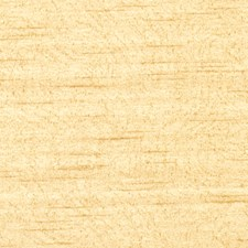 Honey Texture Plain Decorator Fabric by Trend