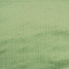 Aloe Decorator Fabric by Schumacher