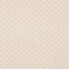 Pearl Grey Decorator Fabric by Schumacher