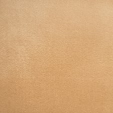 Honey Solid Decorator Fabric by Trend