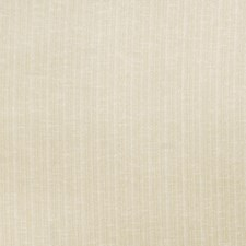 Suede Texture Plain Decorator Fabric by Trend