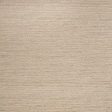 Sesame Texture Plain Decorator Fabric by Trend