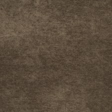 Beaver Solid Decorator Fabric by Trend
