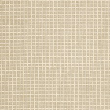 Champagne Check Decorator Fabric by Trend
