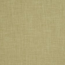 Green Tea Small Scale Woven Decorator Fabric by Trend