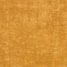 Honey Solid Decorator Fabric by Stroheim