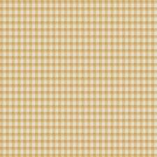 Sunshine Check Decorator Fabric by Trend