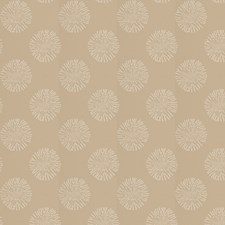 Biscotti Contemporary Decorator Fabric by Fabricut