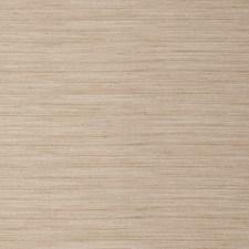 Birch Texture Plain Decorator Fabric by Trend