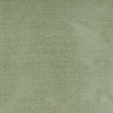 Aloe Decorator Fabric by Highland Court