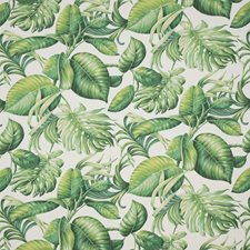 Spring Green Tropical Decorator Fabric by Brunschwig & Fils