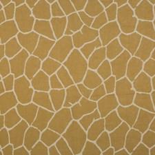 Ginger Decorator Fabric by Brunschwig & Fils
