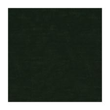 Emerald Solids Decorator Fabric by Brunschwig & Fils