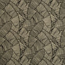 Onyx Botanical Decorator Fabric by Brunschwig & Fils