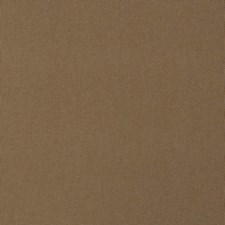 Oak Solid Decorator Fabric by Trend