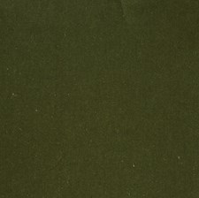 Garden Green Solid Decorator Fabric by S. Harris
