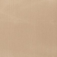 Sepia Global Decorator Fabric by S. Harris