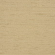 Bamboo Solid Decorator Fabric by Trend