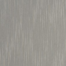 Champagne Texture Plain Decorator Fabric by Fabricut