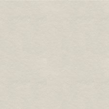 Light Grey Solids Decorator Fabric by Lee Jofa