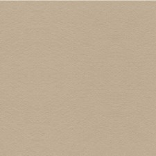 Taupe Solids Decorator Fabric by Lee Jofa