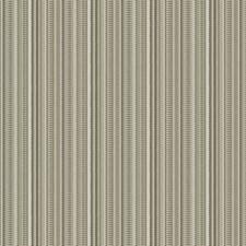 Birch Stripes Decorator Fabric by Fabricut