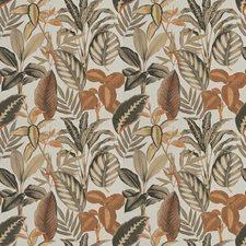 Coriander Print Pattern Decorator Fabric by Fabricut
