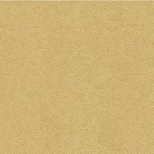 Dune Skins Decorator Fabric by Kravet