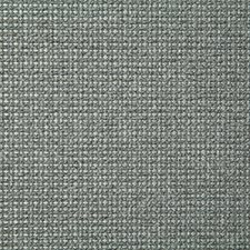 Dew Solid Decorator Fabric by Pindler