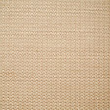 Cameo Solid Decorator Fabric by Pindler