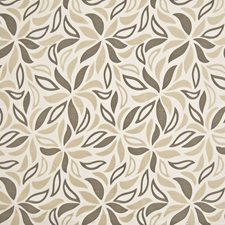 Latte Decorator Fabric by Kasmir