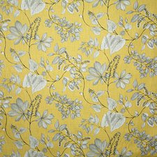 Citrine Traditional Decorator Fabric by Pindler