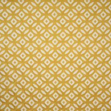Soleil Decorator Fabric by Pindler