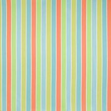 Citrus Stripe Decorator Fabric by Greenhouse