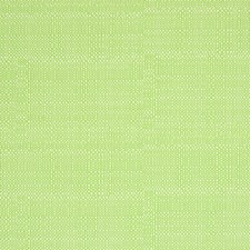 Island Green Solid Decorator Fabric by Greenhouse