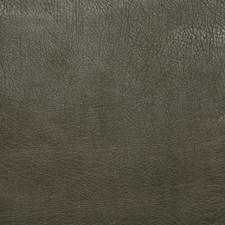 Greentea Decorator Fabric by Pindler
