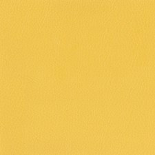 Goldenrod Decorator Fabric by Silver State