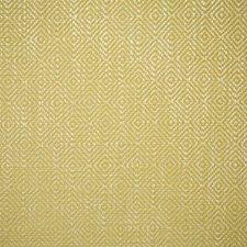 Lemon Contemporary Decorator Fabric by Pindler